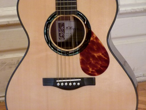 Kathy Wingert Model F Custom - bridge and rosette - guitar review at onemanz.com