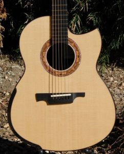 Greenfield G2 Guitar Lutz spruce top readers photos