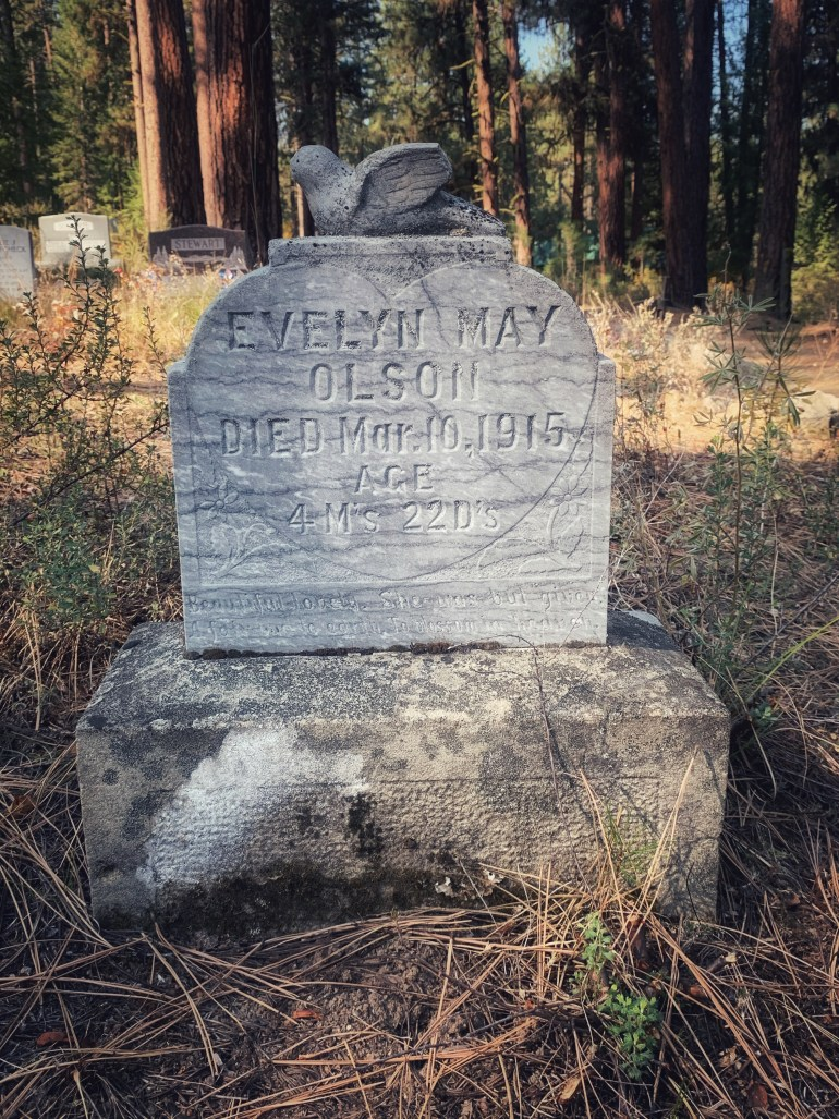 Historic Cemetery in Placerville, Idaho