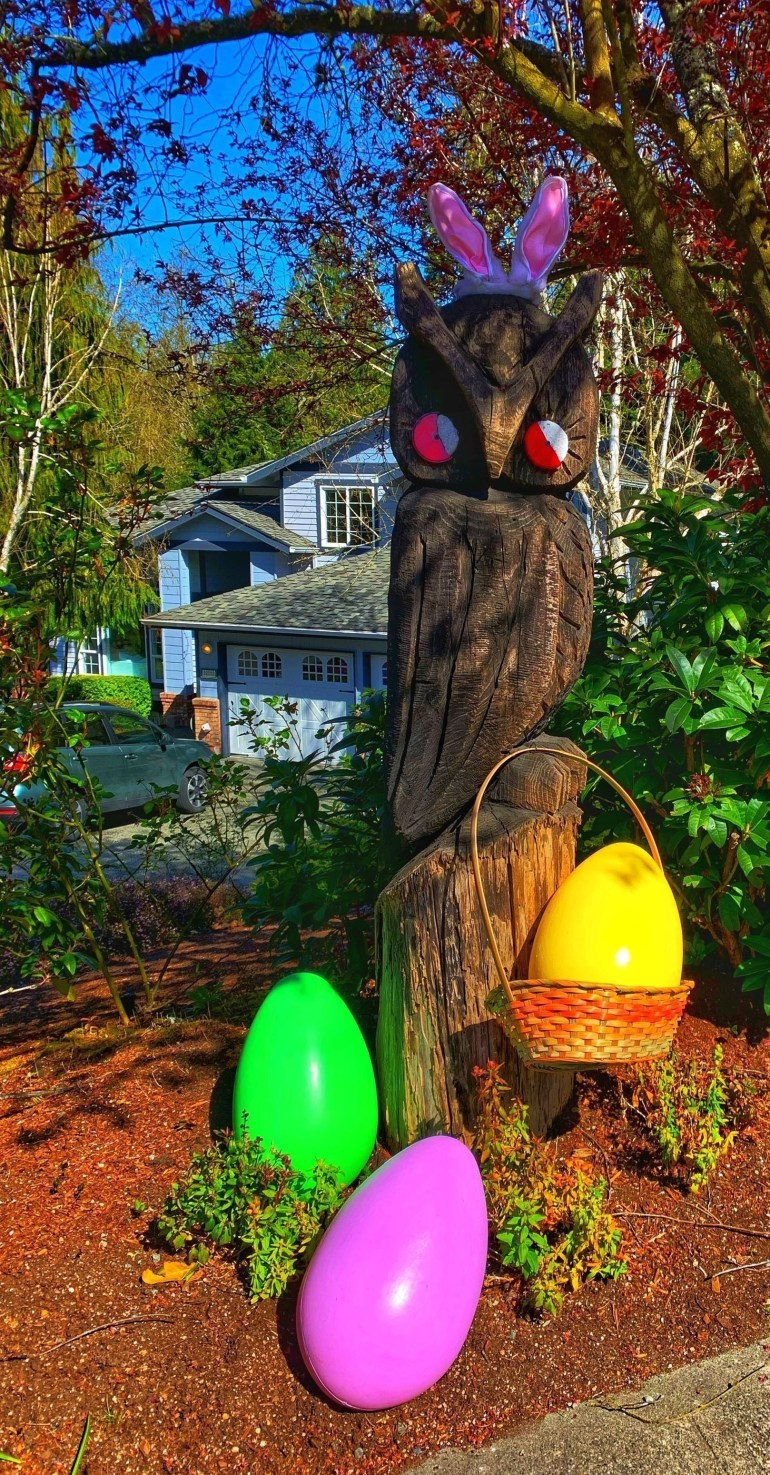 2020 in Review: Easter Owl