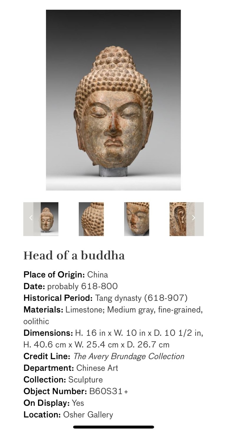 Head of a Buddha: Touring Art Museums During Covid: Divine Bodies at the Asian Museum of Art in San Francisco