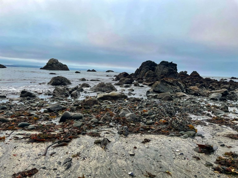 Chetco Point Park in Brookings, Oregon