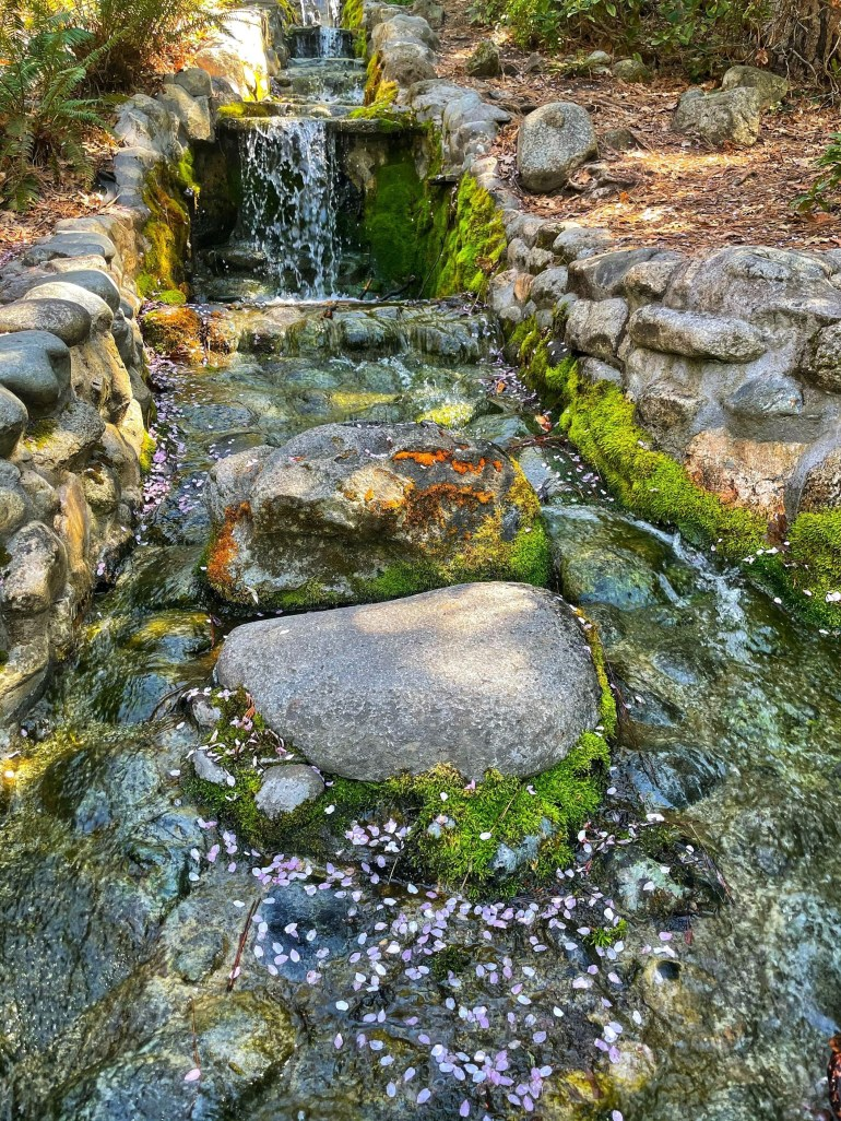 A Spring Afternoon at Lithia Park in Ashland, Oregon