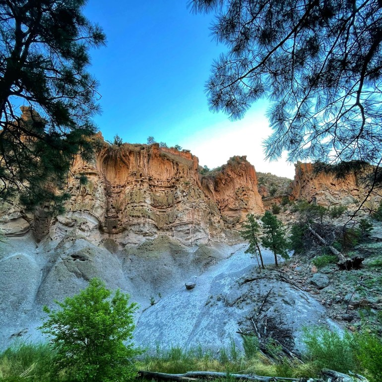 Tree Frame: At Bandelier National Monument, New Mexico