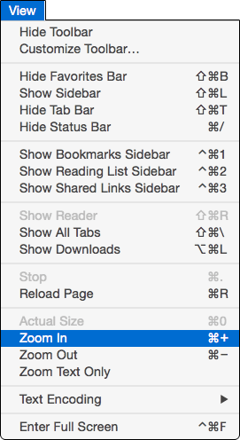 Safari's View menu, showing Zoom in, Zoom Out, and Zoom Text Only.