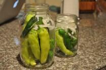 Lovely peppers ready for fermenting