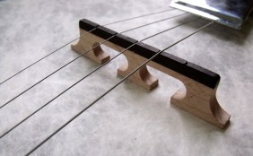 Banjo bridge missing a string