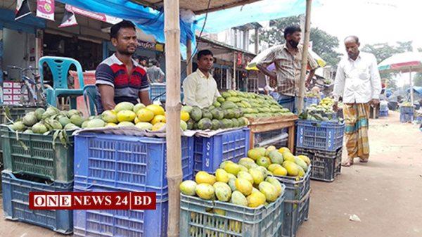করোনার প্রভাব আমের বাজারে, সূর্যাপুরী আম প্রতি কেজি ৭ টাকা