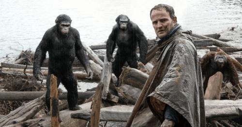 man and ape