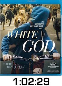 White God Bluray Review