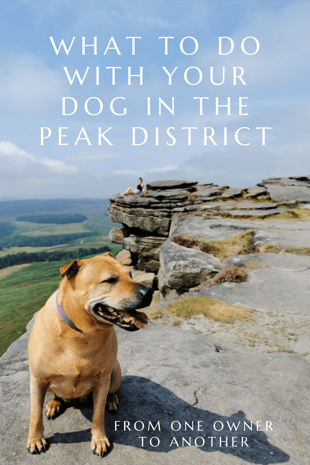 What to do with your dog in the Peak District by From One Owner to Another