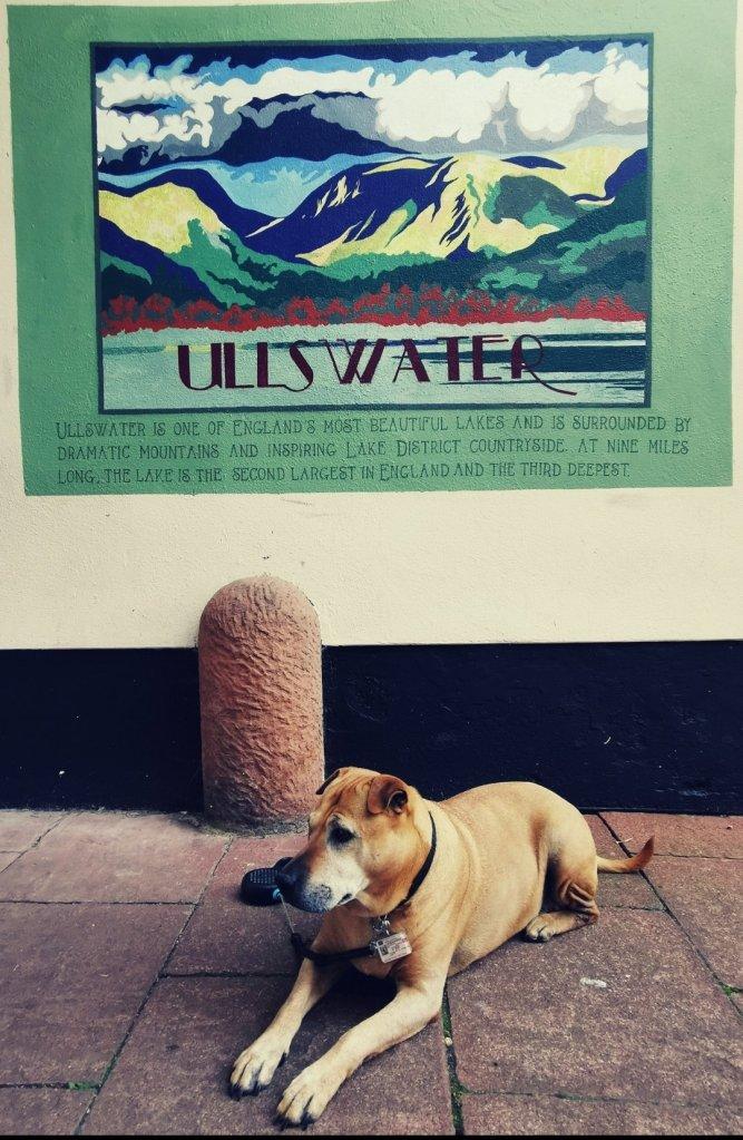 Dog-friendly Ullswater Lake