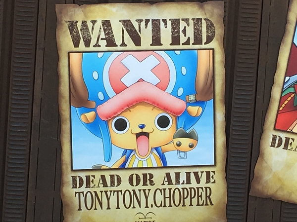 Wanted Poster of Cotton Candy Lover Tony Tony Chopper.