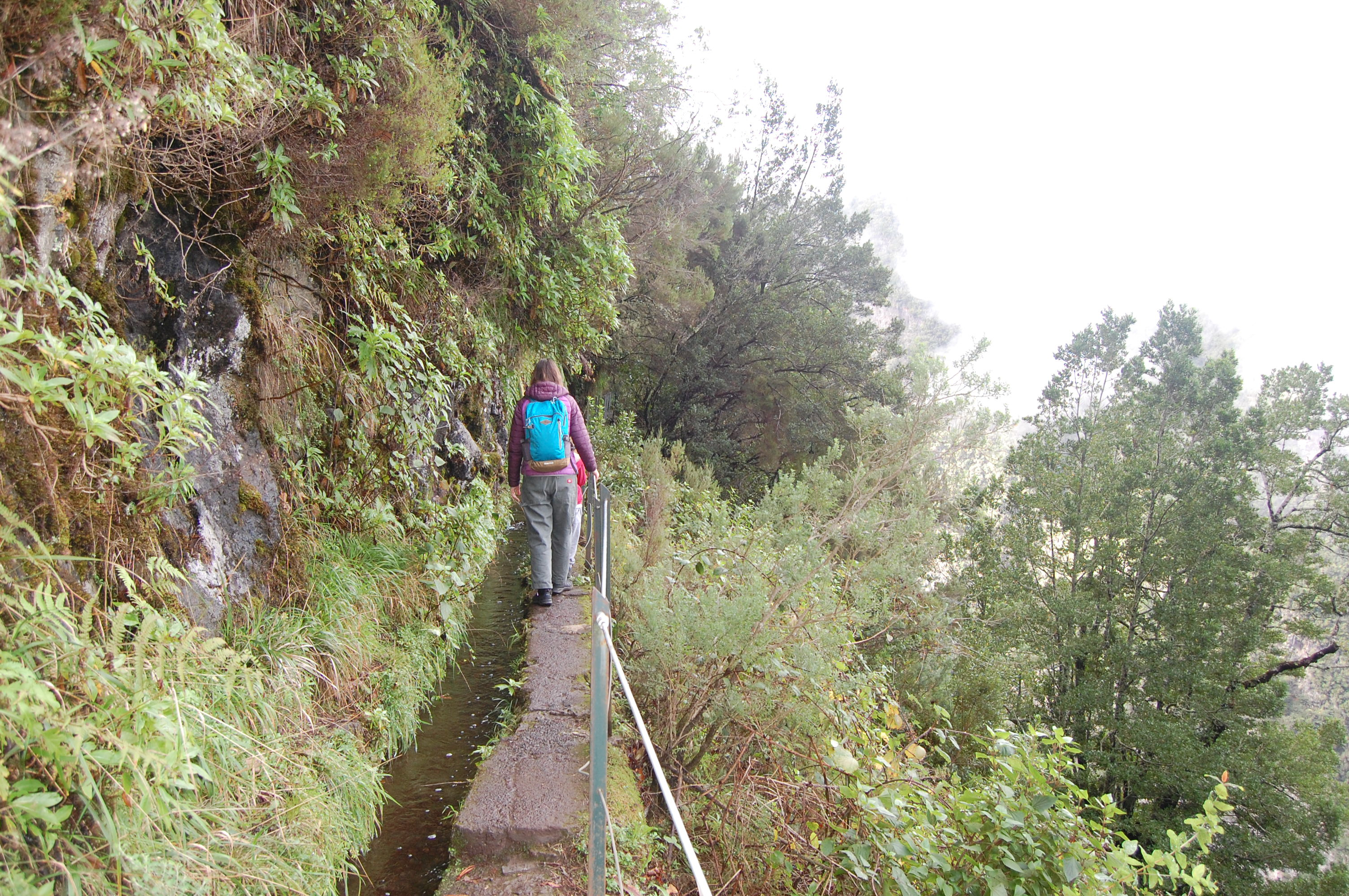 The author walking with a blue backpack on a Madeiran levada to the Caldeirao Verde