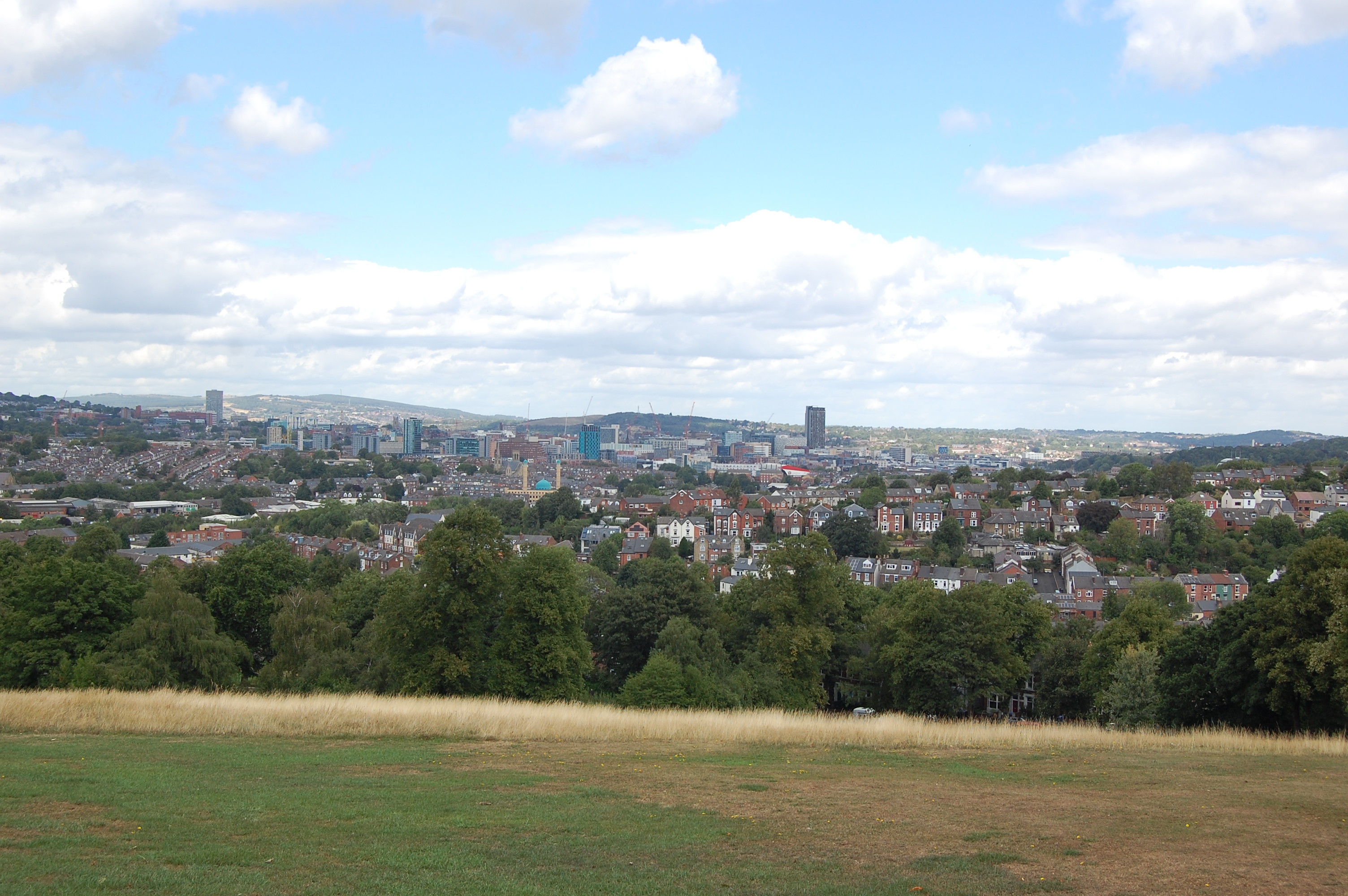Long distance views out over the city of Sheffield from the top of Meersbrook Park with the grass and trees of the park in the foreground.