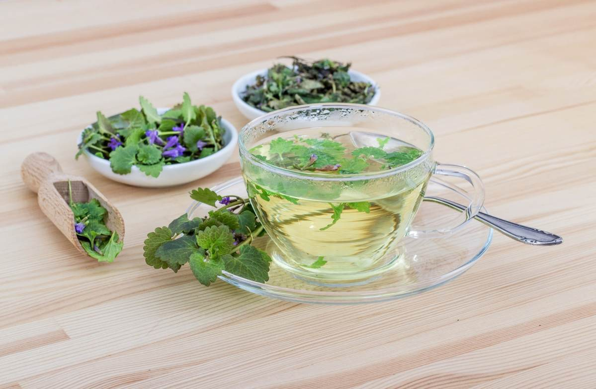 Nettle and Mint Herbal Tea