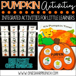 Pumpkin Life Cycle Activities