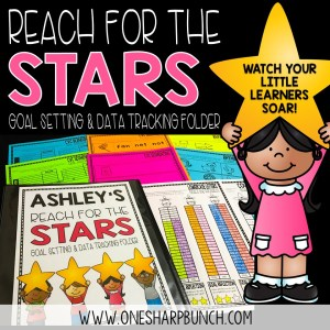 Watch your little learners soar with this goal setting and data tracking binder!