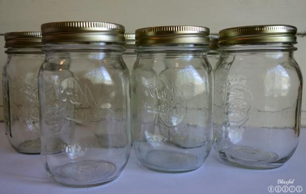 Bug Jar Jars