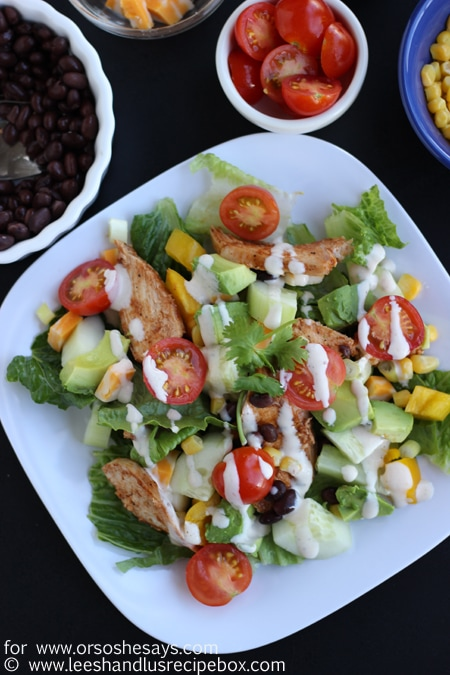 Hold on to the last days of summer with this fresh, delicious BBQ Chicken Salad from Leesh & Lu. Get the recipe on www.orsoshesays.com.
