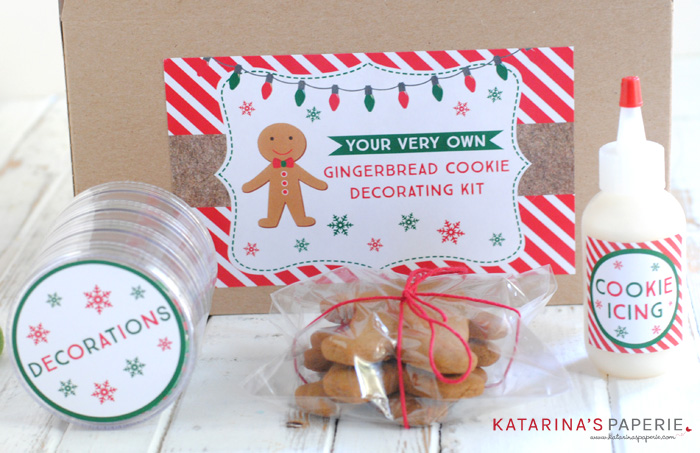 Finished gingerbread cookie decorating kit