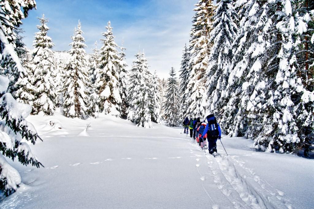 snow-day-activities
