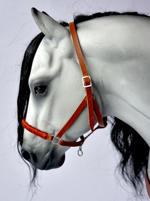 The Grey with a tan halter