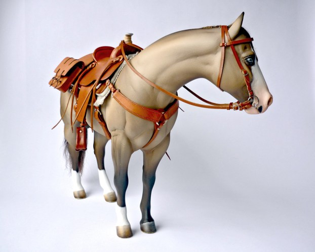 one sixth saddles gallery of images