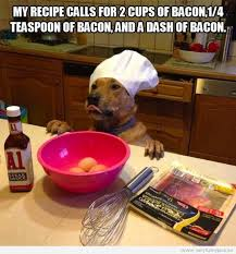 The royal cook did not disappoint......the bacon was prepared purrfectly!