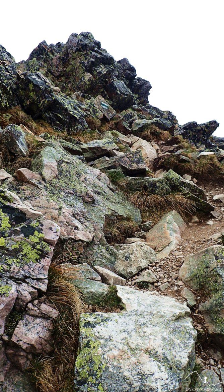 Wybieramy ścieżkę prowadzącą prosto do góry - Zadni Ornak (1867 m n.p.m.)