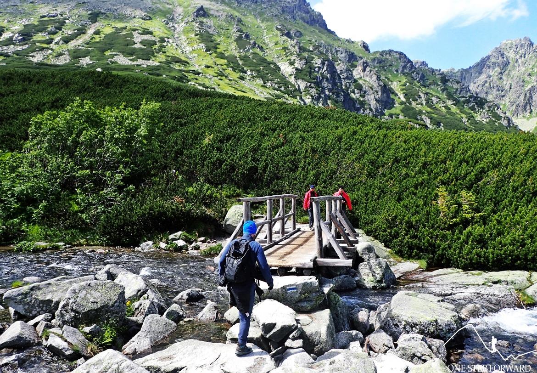 Drewniany mostek nad potokiem Roztoka