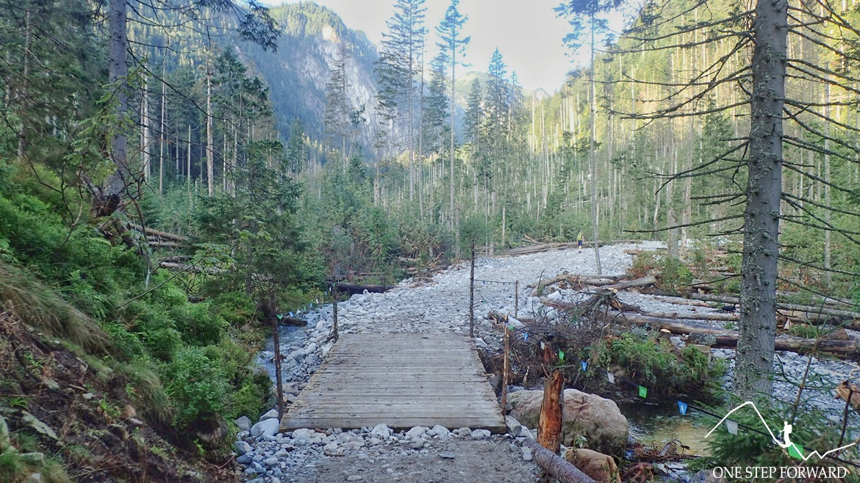 Zielony szlak prowadzący przez Dolinę Roztoki