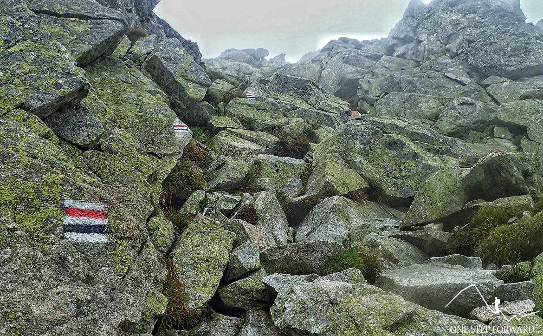 Kozi Wierch - przed szczytem
