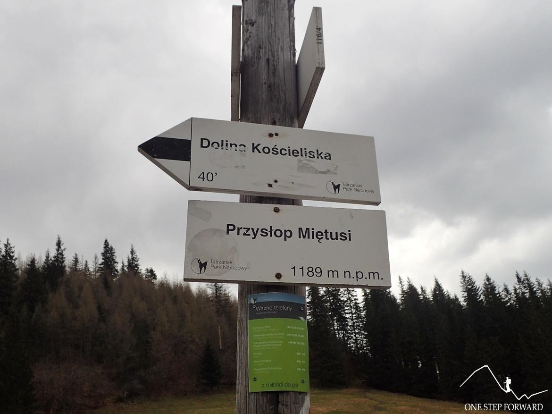 Przysłop Miętusi - skrzyżowanie szlaków