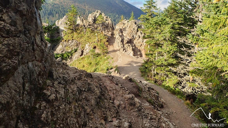Gęsia Szyja - ostatnie metry przed szczytem