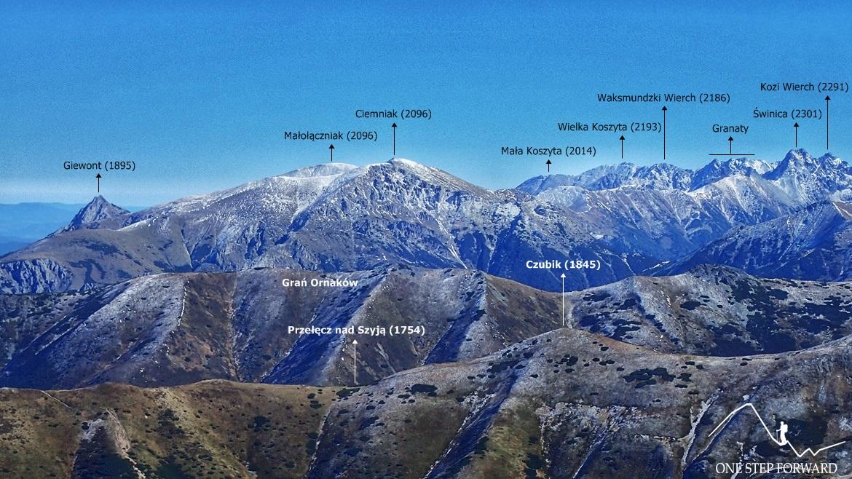 Wołowiec - panorama ze szczytu