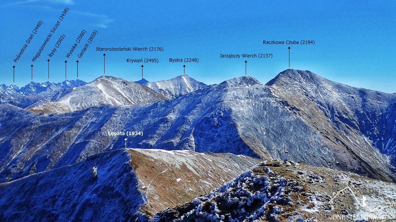 Wołowiec - panorama w kierunku Bystrej i Starorobociańskiego Wierchu