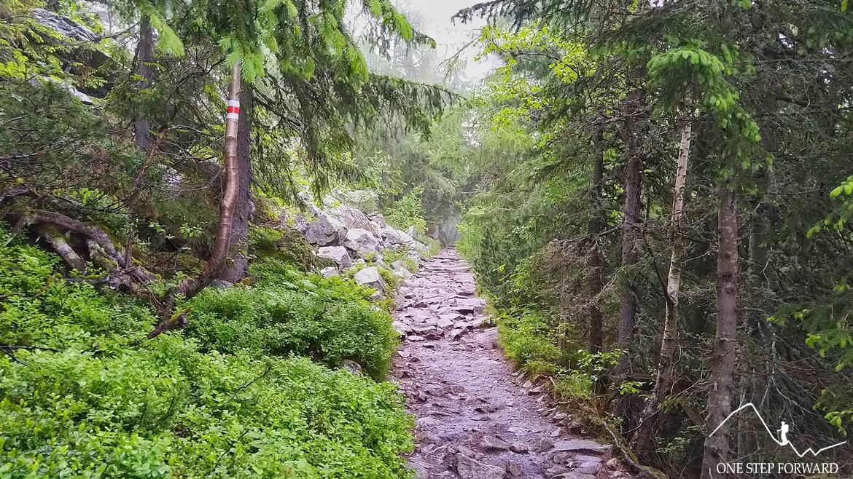 Czerwony szlak nad Popradzki Staw (Popradské Pleso)