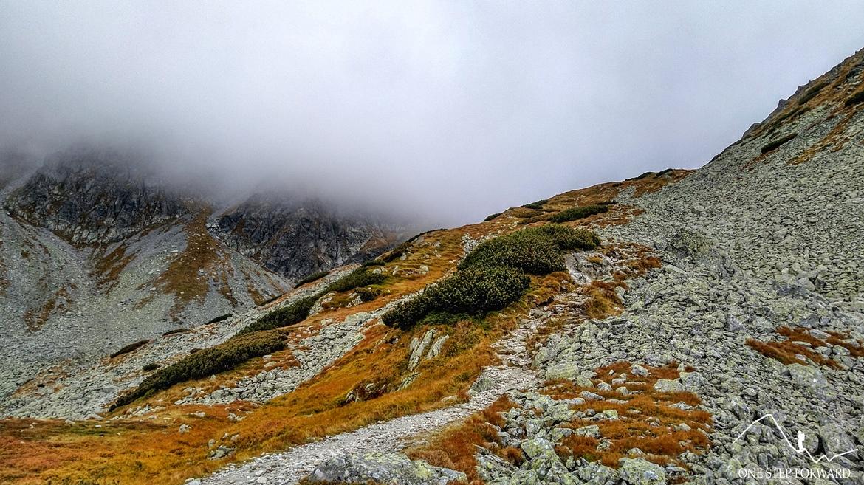 Szlak na Banikowską Przełęcz przez Dolinę Spaloną