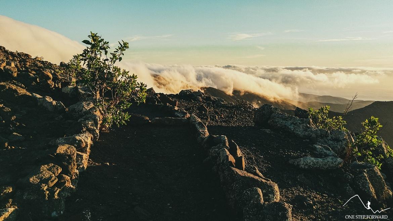 Szlak na najwyższy szczyt Fuerteventury - Pico de la Zarza,