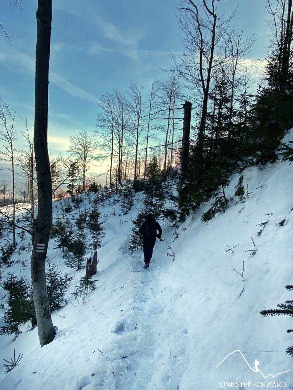 Zejście ze Skrzycznego czerwono - zielonym szlakiem