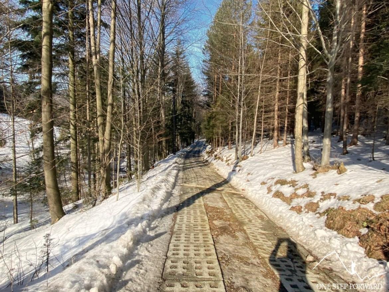 Ulica Leśna - zielony szlak turystyczny