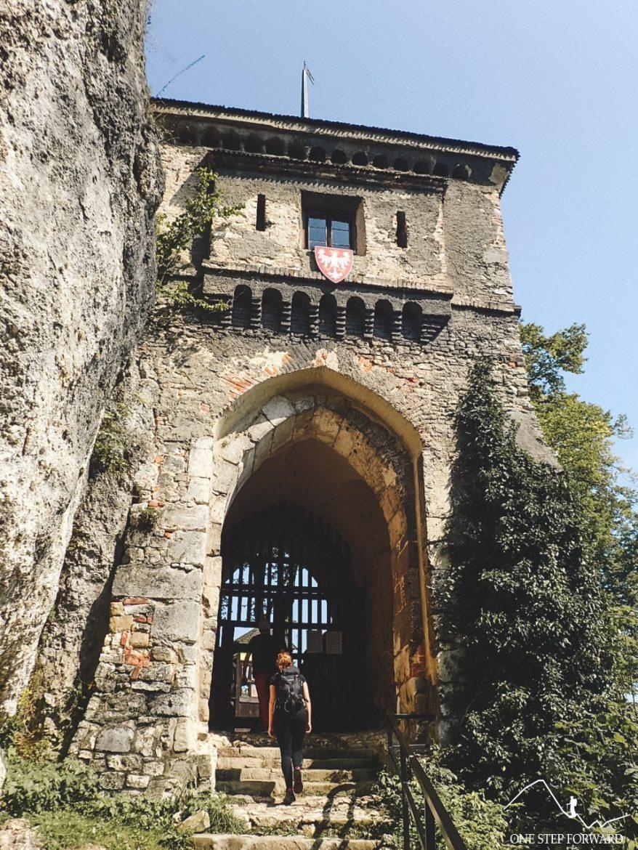 Zabytkowa brama - Zamek w Ojcowie