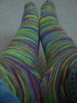 clown_socks.jpg