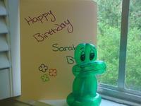 birthday_frog