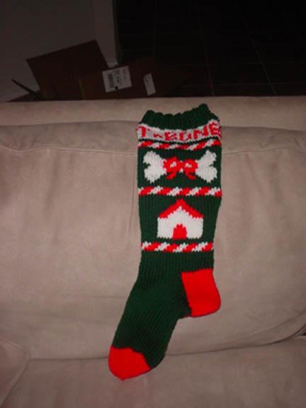 Tbone_stocking_full_1