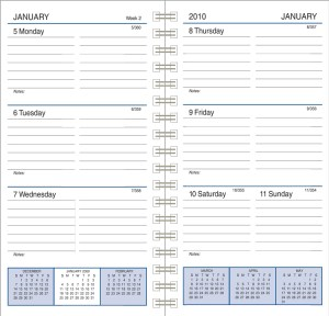 3X6WEEKLY-PLANNER-REFILL-2010-HR