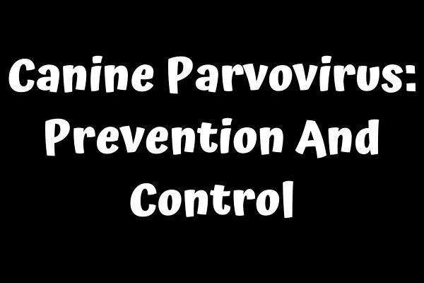 Canine Parvovirus: Prevention And Control