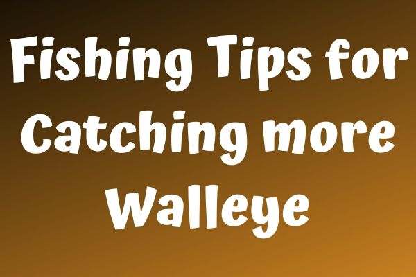 Fishing Tips for Catching more Walleye