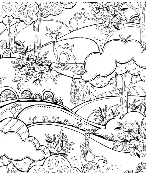 Adult Coloring Book Animals in the Forest